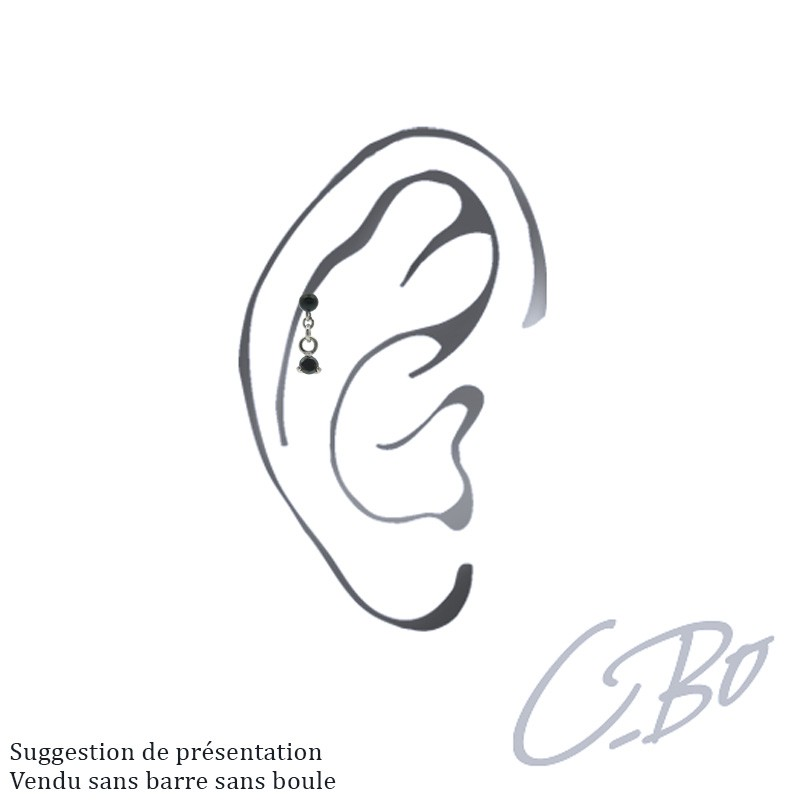 bo ch 15 ms cartilage